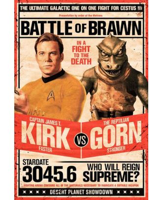 Star Trek Kirk Vs Gorn 24x36 Poster