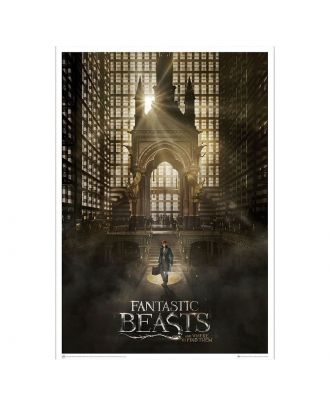 Fantastic Beasts and Where to Find Them: Magical Congress Art Print