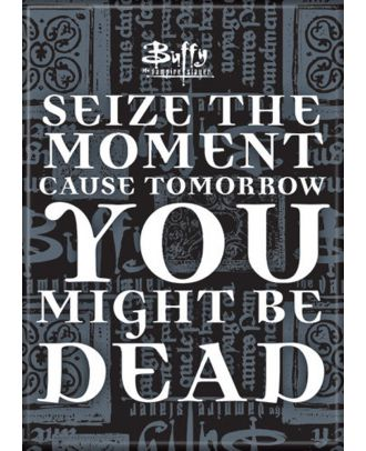 Buffy The Vampire Slayer Seize the Moment Magnet