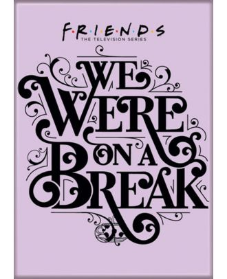 Friends We Were On A Break 3.5 x 2.5 inch Photo Magnet