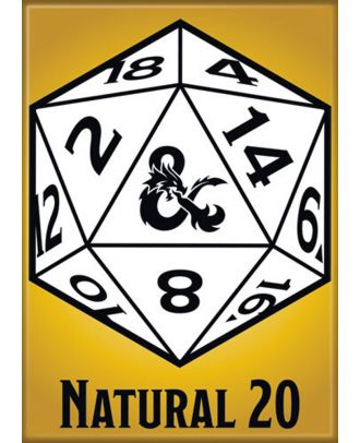 Dungeons and Dragons Natural 20 3.5 x 2.5 Magnet