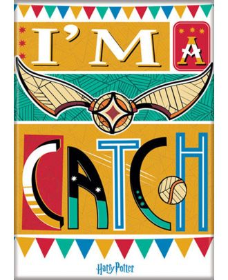 Harry Potter Snitch I'm A Catch Illustrated 3.5 x 2.5 Magnet