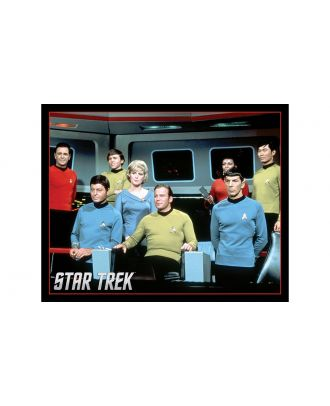 Star Trek Classic Crew on Bridge 16 x 20 Poster